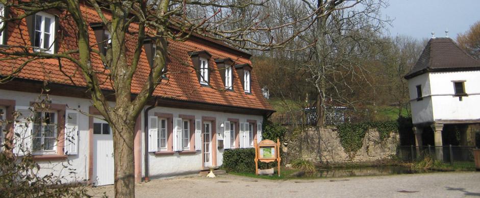 Ajn Saarland Hof